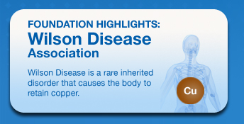 Feature Foundaton : Wilson Disease Association